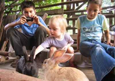Kinder und Hasen
